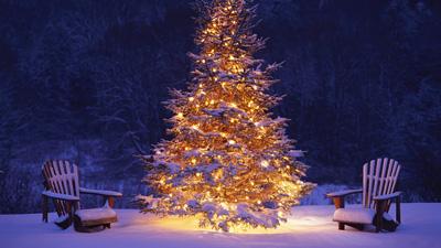 ۴ دی جشن کریسمس [ 25 December ]